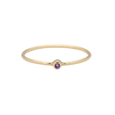 ANNA + NINA 14 Karaat Gouden Solid Gold Birthstone February Ring 19-3M908004G