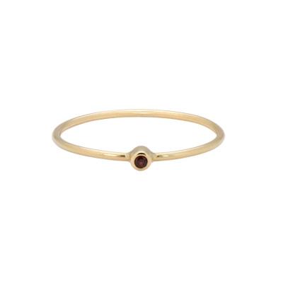 ANNA + NINA 14 Karaat Gouden Solid Gold Birthstone January Ring 19-3M908001G