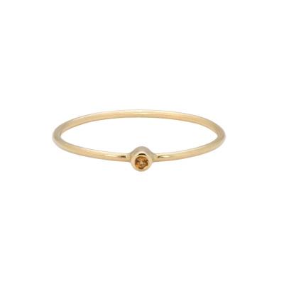 ANNA + NINA 14 Karaat Gouden Solid Gold Birthstone November Ring 19-3M908031G